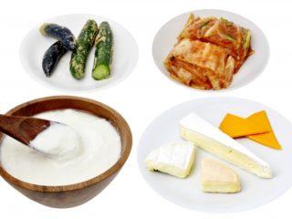 乳酸菌の多い食材